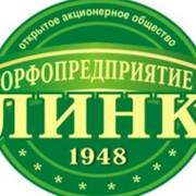 Тамара Козеня - 52 года на Мой Мир@Mail.ru