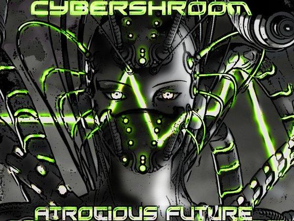 Cybershroom