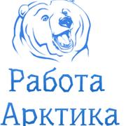 Работа Арктика группа в Моем Мире.