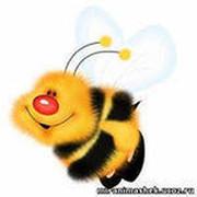 Конкурс детского рисунка «Сохраним пчелу - сохраним планету» группа в Моем Мире.