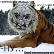 Serzh 2012 Nikitishin on My World.