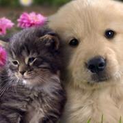 Лариса Бакиева on My World.