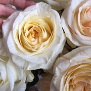Aromary.ru Духи Тестеры on My World.