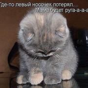 Вера Старчикова on My World.